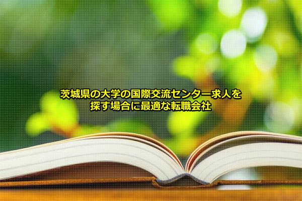 茨城県の大学の国際交流センターで働くイメージの画像