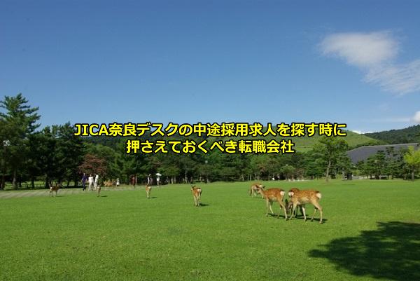 奈良公園と鹿の画像
