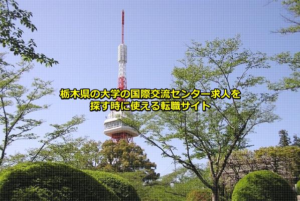 栃木県の大学の国際交流センター求人の発生する確率の高い宇都宮市にある宇都宮タワーの画像