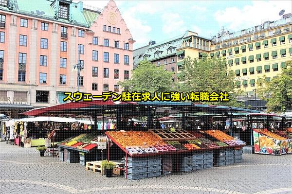 勤務地がスウェーデンの駐在求人の集まるストックホルムの画像