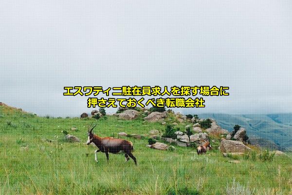 エスティワニの風景の画像