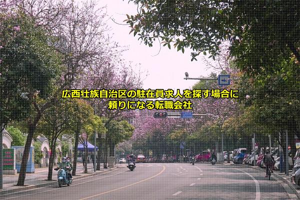 広西壮族自治区の駐在員求人を募集する企業が拠点を置くことの多い南寧市の画像