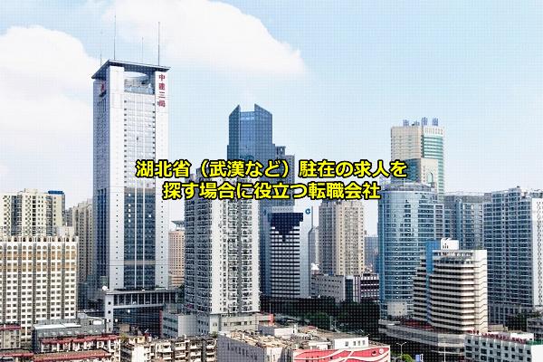 湖北省駐在員求人を募集する日系含めた外資系企業が拠点を置くことの多い武漢の画像